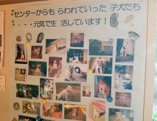14.12.22静岡県動物管理指導センター⑧