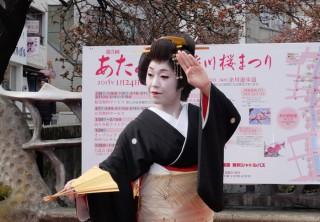 15.01.24熱海桜糸川桜まつり①