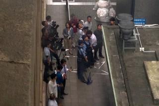 13.9.25静岡県庁に猿出没②