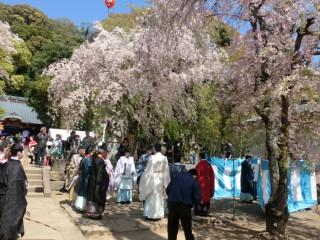 14.4.15伊豆山神社例大祭①